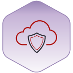Infrastructure-Security-Icon